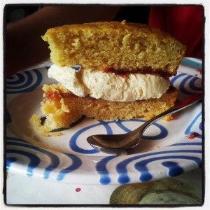 Vegan victoria sponge cake sandwiched with dairy-free icecream