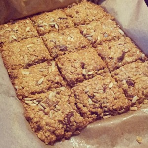 Coconut_oat_protein_bars[1]