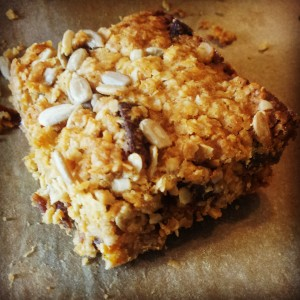 coconut_protein_bar[1]